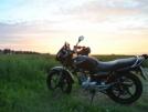 Yamaha YBR125 2011 - Ёбрик