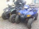 Stels ATV 100C 2010 - Динли