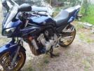 Yamaha FZS1000 2004 - Пчёл