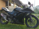 Kawasaki Ninja 300 2013 - Квачер