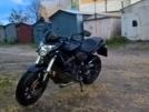 Honda CB600F Hornet 2010 - шершень