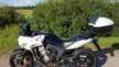 Honda CBF600 2013 - Хонда