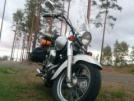 Honda VT750C Shadow 2000 - Мотоцикл