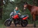 Aprilia PEGASO 650 2005 - Рыжий