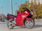 Honda CBR1100XX Super Blackbird 2001 - Дрозд