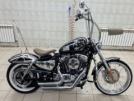 Harley-Davidson 1200 Sportster Custom 2007 - спорти