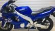 Yamaha YZF600R Thundercat 2001 - Кот