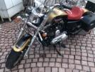 Harley-Davidson XL 1200L Sportster 1200 Low 2017 - Шмель