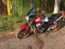 Honda CB400SF 2007 - Птичка