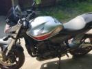 Honda CB600F Hornet 2010 - Пискарь