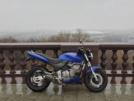 Honda CB600F Hornet 2001 - Шершень