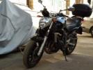Yamaha FZ6-N 2006 - Фазер