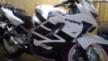 Honda CBR600F4 1999 - Моя девочка