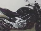 Suzuki Gladius 2009 - Беззубик