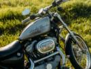 Harley-Davidson Sportster Custom 883 2002 - Харлей
