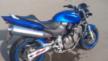 Honda CB600F Hornet 2000 - Хорь
