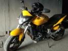 Honda CB600F Hornet 2011 - Бамблби