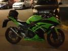 Kawasaki Ninja 300 2014 - Лягушонок