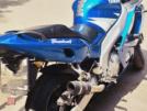 Yamaha YZF600R Thundercat 2001 - Котяра