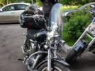 Harley-Davidson Sportster 1200 2008 - Vrabec