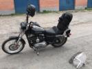 Harley-Davidson XL1200C Sportster 1200 Custom 2007 - шпрот