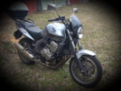 Honda CBF600 2009 - Хомяк