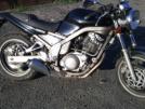Yamaha SRX400 1991 - мот