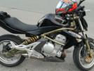 Kawasaki ER-6n 2006 - Pickle