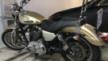 Harley-Davidson 1200 Sportster 2010 - Харлик