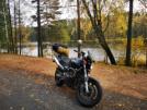 Honda CB600F Hornet 2002 - Шмель