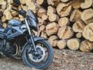 Yamaha XJ6N 2009 - мотоцикл