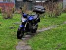 Honda CB600F Hornet 2007 - CB600F