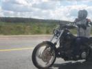 Harley-Davidson Softail Standard 2000 - Мягкохвост