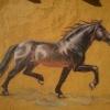RiderKherson