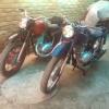 goni200