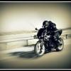 motofreeman
