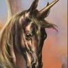 Unicorn1135