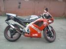 23.04.2014 найден Aprilia RS 50 1999 (Россия, Санкт-Петербург)